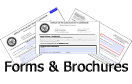 Forms and Brochures